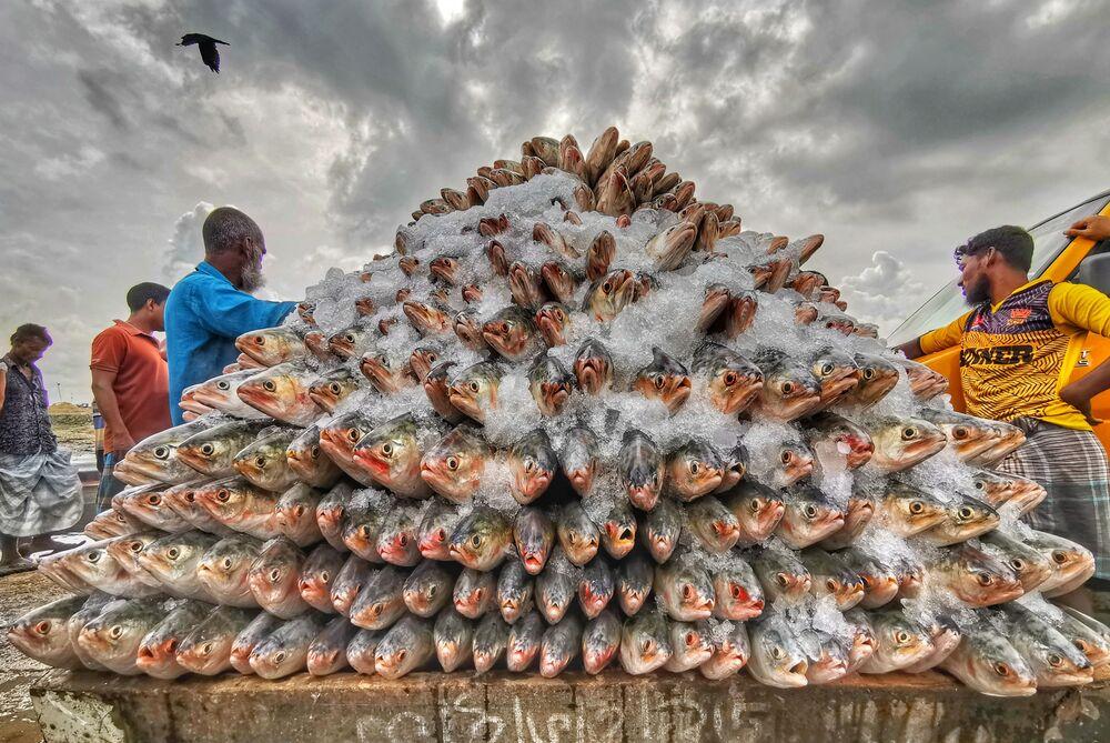 الصورة بعنوان سمكة هيلسا، للمصورة البنغلاديشي عظيم خان روني، الفائز في فئة صورة على الهاتف من مسابقة Pink Lady® لأفضل مصور الطعام لعام 2020