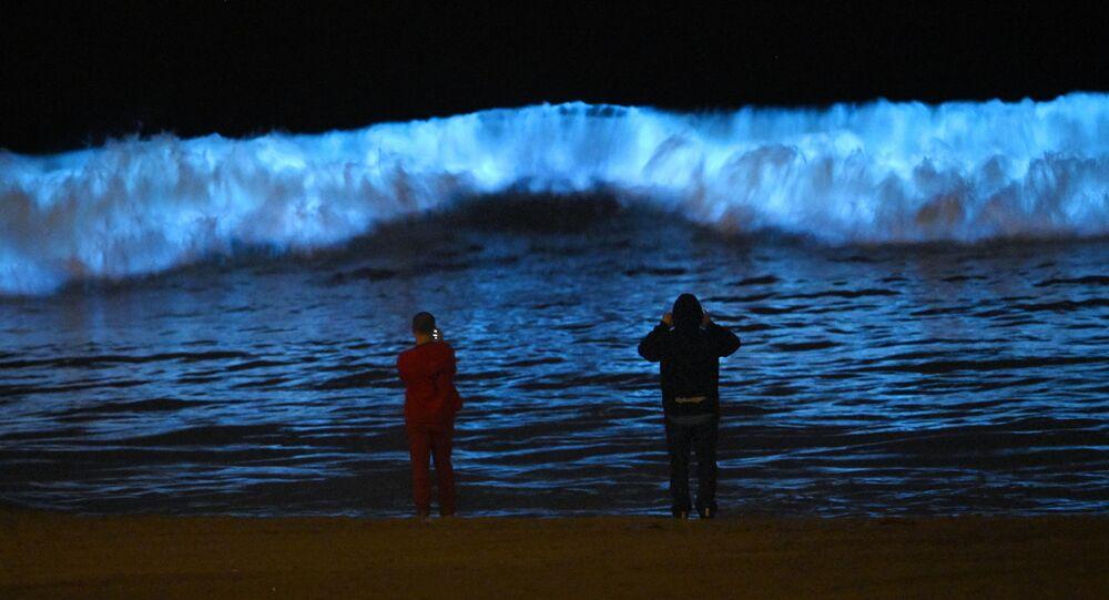 أمواج زرقاء على سزاحل لوس أنجليس