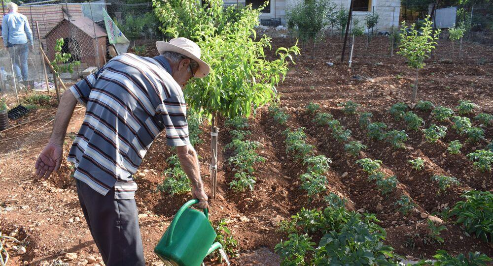 اللبنانيون يتجهون للزراعة بسبب كورونا وتفاقم الأزمة الاقتصادية