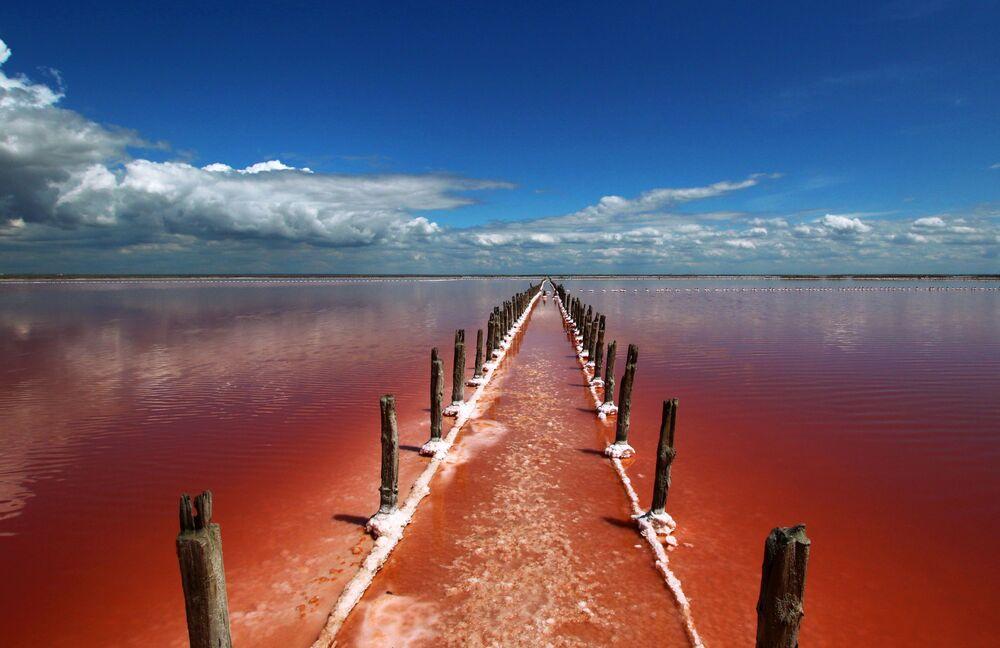 بحيرة ساسيك-سيفاش بالقرب من يفباتوريا، القرم، روسيا 26  مايو/ أيار 2020