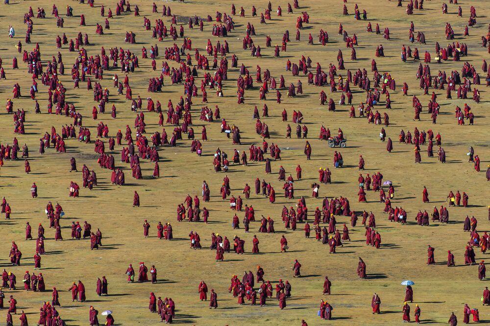 صورة بعنوان نمط الحياة البرية في التبت، للمصور شينيا إتاهانا، ضمن القائمة القصيرة من مسابقة التصوير صورة الإنسانية لعام 2020