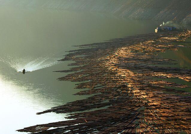 صورة بعنوان تجمع الأشخاص على نهر يالو، للمصور الصيني تشوفان سوي ، الفائز بالمركز الثاني في فئة بورتفوليو، من مسابقة جائزة حمدان بن محمد الدولية للتصوير بدورتها التاسعة بموسم الماء