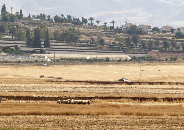 مستوطنات الضفة الغربية المحتلة، مستوطنة باكوت بالقرب من غور الأردن، 18 يونيو 2020