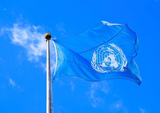 علم الأمم المتحدة، 2019