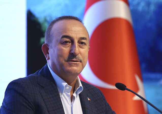 وزير الخارجية التركي، مولود جاويش أوغلو، 20 يونيو 2020