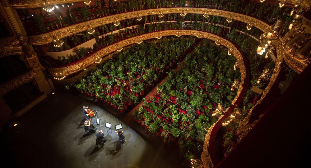 أعادت دار أوبرا ليسيو في برشلونة فتح أبوابها، أمس الاثنين، للمرة الأولى بعد إغلاق استمر أكثر من 3 أشهر، وذلك بإقامة حفل موسيقي غير اعتيادي ضيوفه آلاف النباتات، 22 يونيو  2020