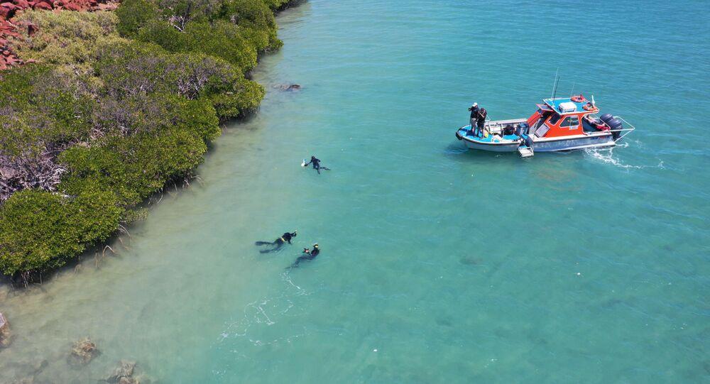 علماء آثار وباحثون من جامعة فليندرز وجامعة ويسترن أستراليا وجامعة جيمس كوك يستكشفون مواقع تحت البحر، تعود إلى آلاف السنين عندما كان قاع البحر أرضا جافة، في أستراليا، 2019.