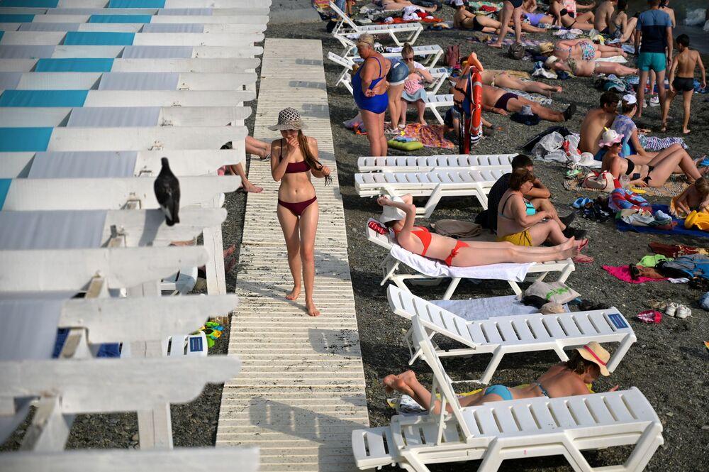 شاطئ المنتجع الصيفي تسيرك في سوتشي